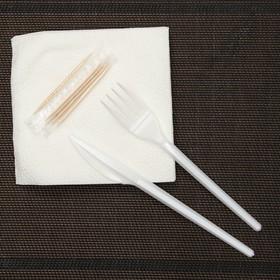 Набор для пикника «Биг-Пак №1», 6 персон, цвет белый - фото 1587704