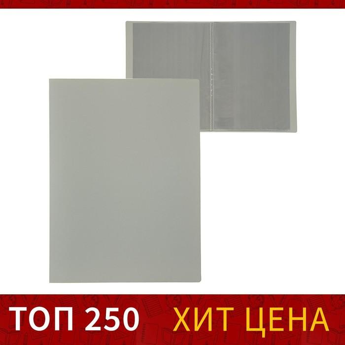 Папка с 10 прозрачными вкладышами A4 500 мкм, Calligrata, песок, серая