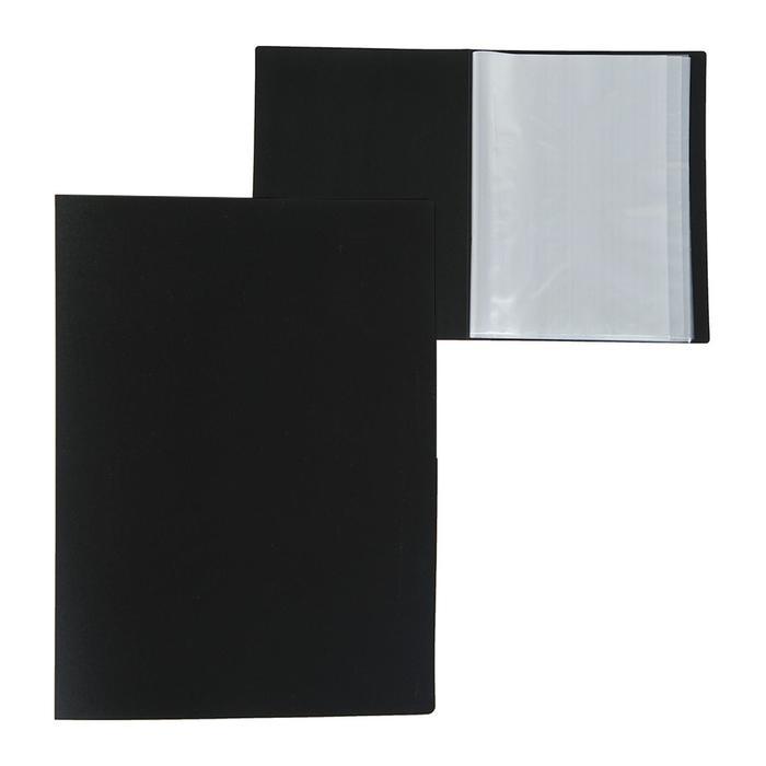 Папка А4, 40 прозрачных вкладышей, 500 мкм, Calligrata, песок, чёрная - фото 282121214