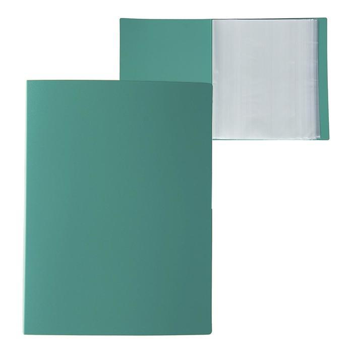 Папка А4, 100 прозрачных вкладышей, 700 мкм, Calligrata, песок, зелёная