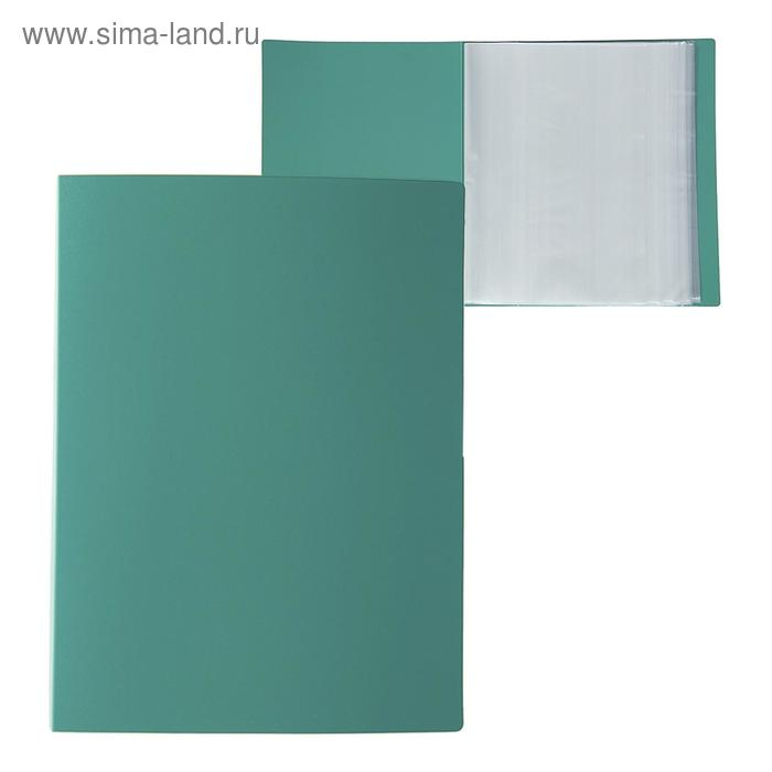Папка со 100 прозрачными вкладышами А4, 700 мкм, Calligrata, песок, зелёная