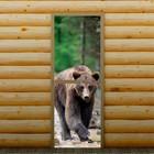 """Дверь для бани и сауны стеклянная """"Бурый медведь"""", 190×70см, 6мм, с фотопечатью"""