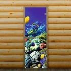 """Дверь для бани и сауны """"Подводный мир"""", 190 х 70 см, с фотопечатью 6 мм Добропаровъ"""