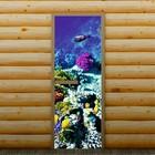 """Дверь для бани и сауны """"Морские обитатели"""", 190 х 70 см, с фотопечатью 6 мм Добропаровъ"""