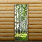 """Дверь левое открывание """"Берёзовая роща"""", 190 х 70 см, с фотопечатью 6 мм Добропаровъ"""