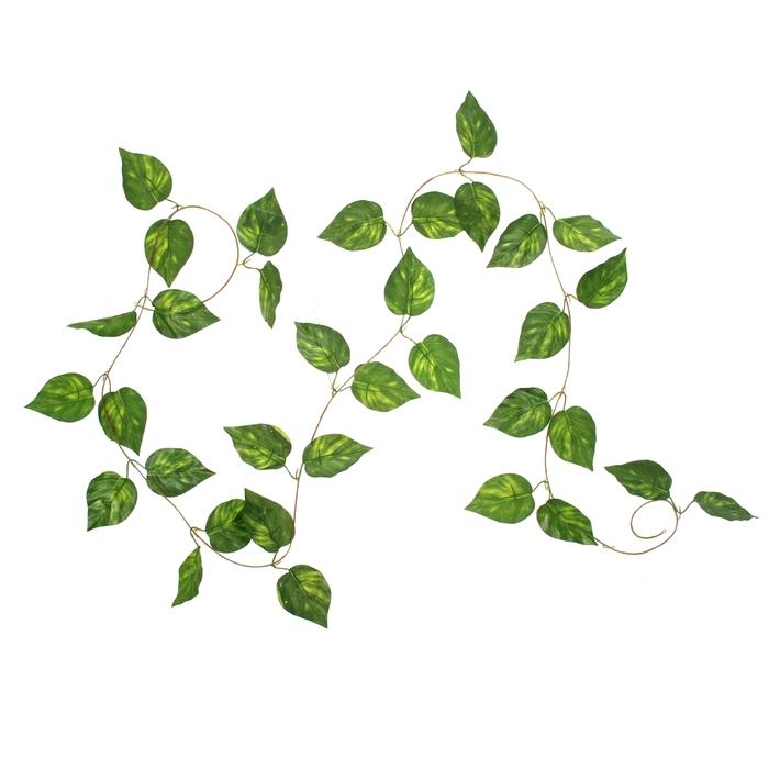 Лиана лист 1,7 м мелкий, цена за 1 шт., (фасовка 12 шт.)