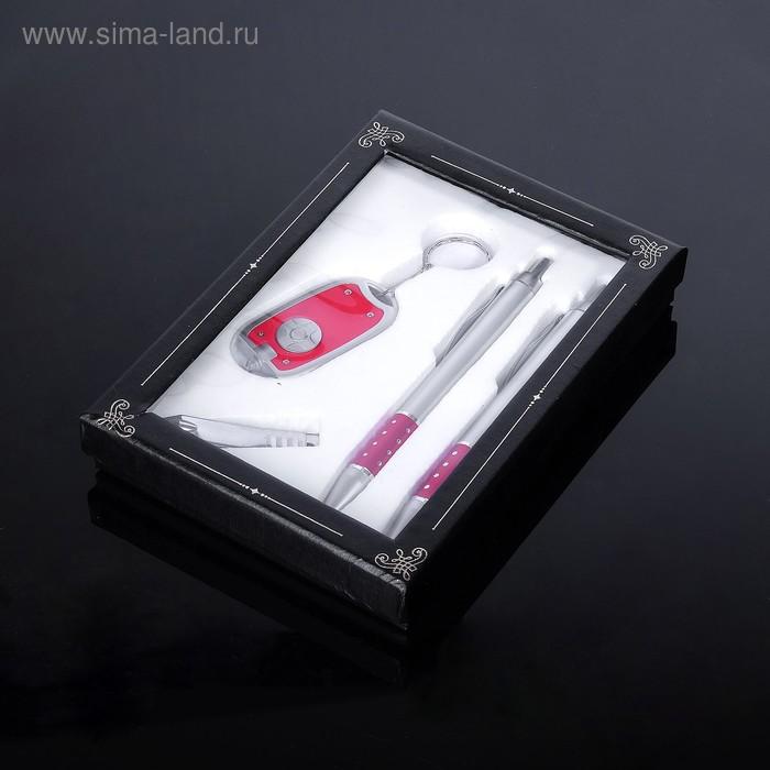 Набор подарочный 4в1: 2 ручки, брелок-фонарик, кусачки, МИКС