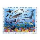 """Пазл на подложке """"Морские животные"""", 63 элемента"""