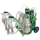 Доильный агрегат 1Т, 22.6 л , последовательно выдаивает 16-20 коров, силикон