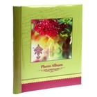 Фотоальбом магнитный 10 листов Big Dog Spring paints 23х28 см МИКС