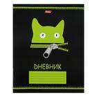 Дневник для 1-11 класса, мягкая обложка Zipper, 40 листов