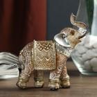 """Сувенир полистоун """"Песочный слон в арабской попоне с серебристыми ушами"""" 10х9х3,8 см"""