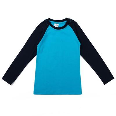 Джемпер для мальчиков, рост 146-152 (42) см, цвет голубой