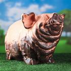 """Садовая фигура """"Свинья в грязи"""", огромная 50 х 30 см"""