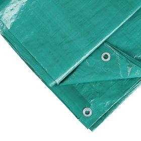 Тент защитный, 6 × 3 м, плотность 120 г/м², люверсы шаг 1 м, зелёный Ош