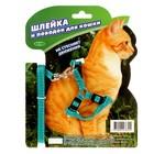 Комплект Зооник шлейка с поводком для кошек, 1.5 м на блистере, стропа 10 мм  МИКС ЦВЕТОВ