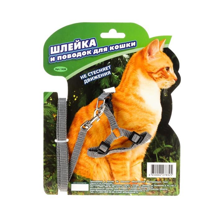 Комплект «Зооник» шлейка с поводком для кошек, 1.5 м на блистере, стропа 10 мм, МИКС ЦВЕТОВ