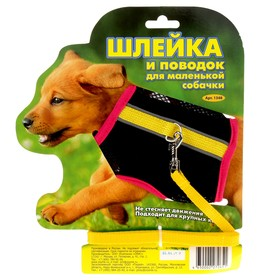 Комплект «Зооник №3»: шлейка из сетки с поводком, стропа 10 мм, микс