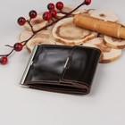 Зажим для денег, с металлическим держателем, карман для монет и карт, шик, цвет коричневый