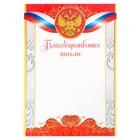 Благодарственное письмо, РФ символика, красное, 21х29,7 см
