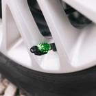 Колпачки на вентиль TORSO граната, зелёные, набор 4 шт.
