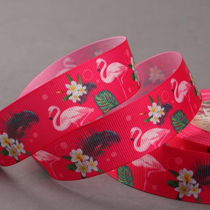 Лента репсовая «Фламинго», 25 мм, 18 ± 1 м, цвет малиновый