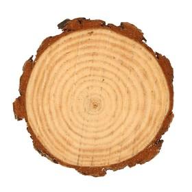 Набор срезов сосны, диаметр 9-11см, толщина 5 мм, 5шт Ош