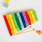 """Musical toy """"Xylophone"""", 12 colors + 2 sticks"""