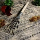 Грабли веерные, пластинчатые, 6 зубцов, длина 60 см, оцинкованная сталь, деревянная ручка