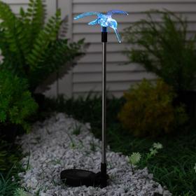 Садовый светильник на солнечной батарее Uniel Colibri, серия Special