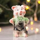 Сувенир «Свинка Мастер»  микс