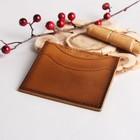 Футляр для карточек, цвет коричневый