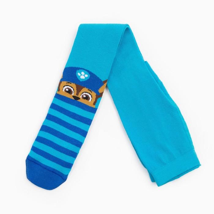 """Щенячий патруль. Колготки PAW PATROL """"Гончик"""", голубой, синий, 98-104 см"""