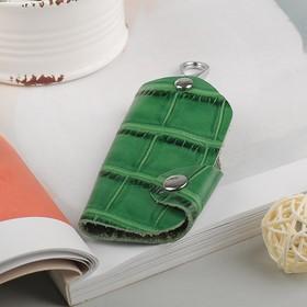 Ключница на кнопке, кольцо внутри, карабин, цвет зелёный Ош