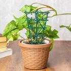 Шпалера-держатель для цветов, h=25 см, набор 2 шт., пластик, зелёное