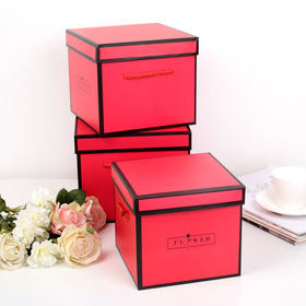 Set boxes 3in1, red, 22 x 22 x 18 - 18 x 18 x 16 cm
