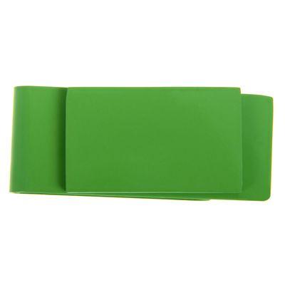 Зажим для денег металл Прямоугольник зеленый