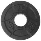Диск чугунный, окрашенный 2,5 кг (диаметр 50мм)