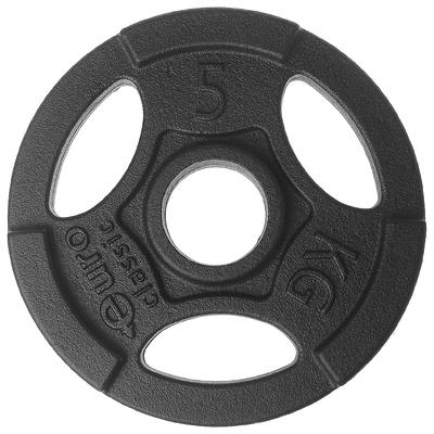 Диск чугунный, окрашенный 5 кг (диаметр 50мм)