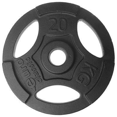 Диск чугунный, окрашенный 20 кг (диаметр 50мм)