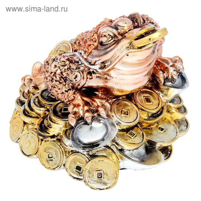 "Фигурка ""Жаба на монетах"" цвет бронза-серебро"