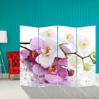 """Ширма """"Орхидеи. Утренняя свежесть"""" 200 × 160см"""