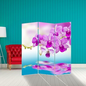 """Ширма """"Нежная орхидея"""", 160 × 150 см"""