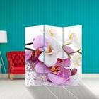 """Ширма """"Орхидеи. Утренняя свежесть"""" 150 × 160см"""