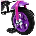 """Велосипед трёхколёсный «Лучик Vivat 1», надувные колёса 10""""/8"""", цвет фиолетовый - фото 983948"""