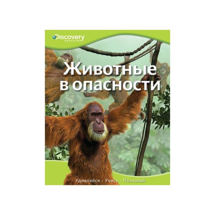 Discovery Education. Животные в опасности