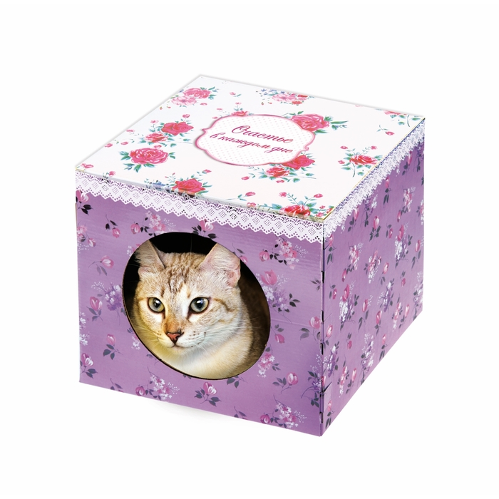 """Домик-коробка с матрасом """"Счастье в каждом дне"""", вход сбоку"""