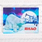 """Acrylic magnet """"YANAO"""" (polar bears and oil rigs), 7.5 x 5.5 cm"""
