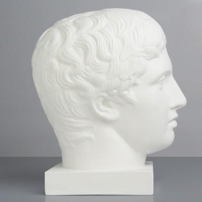 Гипсовая фигура Академическая Голова Дорифора 21*29*35 10-128