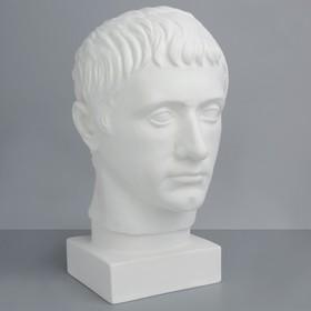 Гипсовая фигура, голова Германика «Мастерская Экорше», 19 х 25 х 36 см